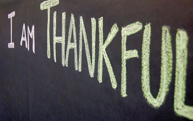 Insurance Advisors Have a Lot to Be Thankful For