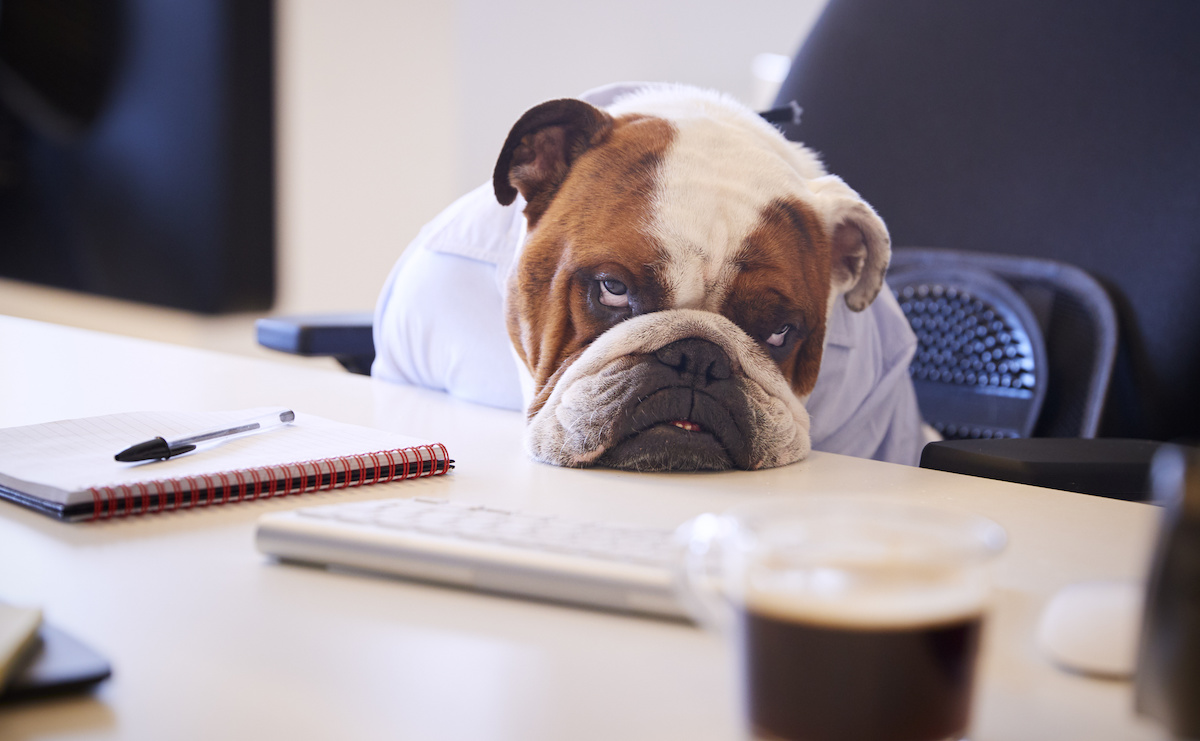 The Impact of Change Fatigue on Your Sales Efforts